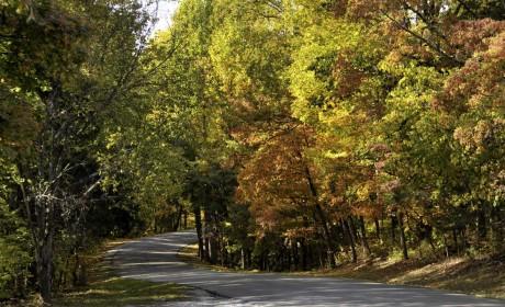 视觉盛宴 | 云自驾 10条北美最美自驾公路推荐