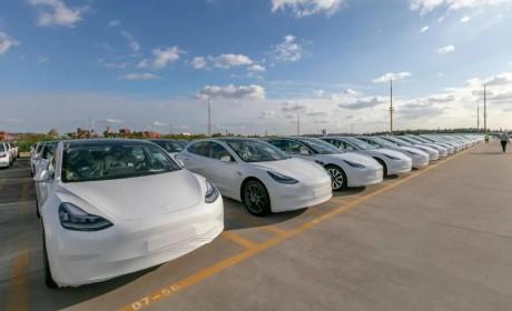 特斯拉业绩电话会:上海工厂要继续增产Model 3和Model Y